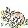 2011年ウサギの水彩画カレンダー