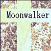 Moonwalker総集編(05)