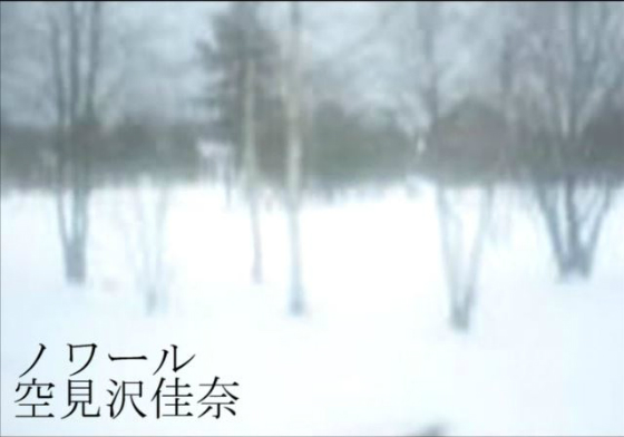 ノワール PVの画像