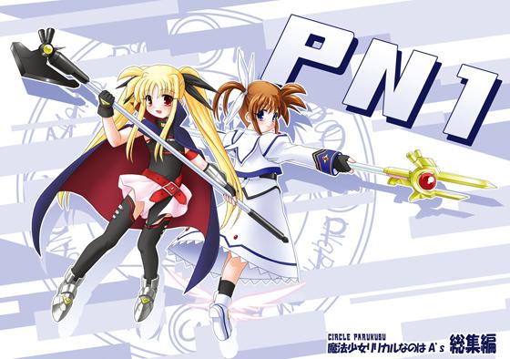 PN1の画像
