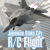 Japanese Otaku City R/C Flight for Windows