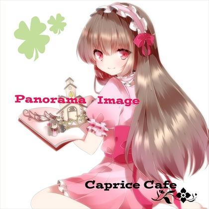 Panorama Imageの画像
