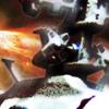 第五巡洋艦戦隊の栄光~宇宙戦艦ヤ●ト前史2195~DigitalbookPackage